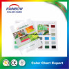 Good Quality Decoration Coating Color Card Chart