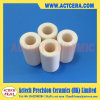 99.5% High Purity Alumina Ceramic Pistons