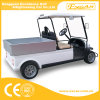 Hot Sale 2 Seater Electric Cargo Car