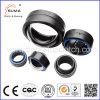 Ge Series Spherical Plain Bearing Radial