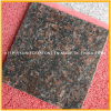 Cheap Polished Indian Brown/ Tan Brown / Coffee Brown/ Coral Brown Granite