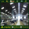 Farming House Building Low Cost Steel Fabrication Prefabricated Cow Shed