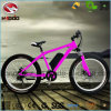 Electric Fat Tire Beach Bicycle A380 Plus with Suspension