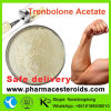 Trembolone Anabolic Steroid Powder Trenbolone Acetate for Lean Muscle Gaining