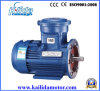 Yb2 Explosion Proof Electrical Motor with CE