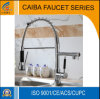 Modern and Popular Brass Spring Kitchen Faucet CB-21205