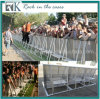 Rk High Quality Road Way Safetey Crowd Control Barrier