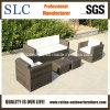 Outdoor Sofa Set/ Sofa Set / Furniture Sofa (SC-B9508-H)