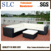 Top Popular Wicker Furniture (SC-B9504)