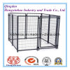 Powder Coated Square Tube Dog Kennels/Dog Cage