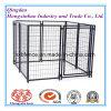 Powder Coated Square Tube Dog Kennels/Dog Cage