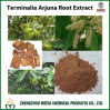Terminalia Arjuna Powder Extract with Arjunolic Acid / Tannin 5% -20%