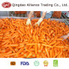 New Crop Fresh Whole Carrot with Good Price