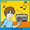 Portable 3W Solar Lantern with FM Radio for Africa