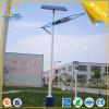 30W Solar Lighting for LED Street Lighting