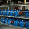 Oil Sealed Rotary Vacuum Pump for Milking Parlor