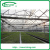 Gutter Connected hoop greenhouse for nursery