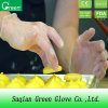 Cheap Food Processing Disposable Vinyl Glove