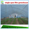 Durable Film Covered Planting Greenhouse