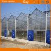 Multipurpose Multi-Span Glass Greenhouse with Long Life-Span