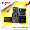 Woofer DJ Sound Equipment Martin Audio Style (CT)