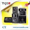 Woofer DJ Sound Equipment Martin Audio Style (CT)