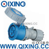 Economic Type Qixing Cee/IEC International Standard Connector Qx-552