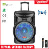 Feiyang/Temeisheng/Kvg Rechargeable Party Cheap Portable Trolley Speaker with Ball Light