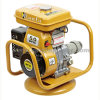 5.5HP 2inch Robin Engine Water Pump with Gasoline Concrete Vibrator