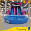 Giant Water Park Pink Inflatable Water Slide with Pool (AQ1011-3)