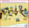 All Kinds of Bolts and Nuts/Screw/Hex Bolt/Machine Screws/Stud Bolt/Wing Nut Made in China
