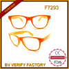Retro Style Cheap Eyeglass Frame and Spectacle Frames China