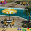 New Fashion Outdoor Umbrella/Beach Umbrella
