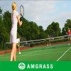 Professional Manufacturer/Supplier of Tennis Basketball Artificial Grass (AN-20L)