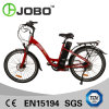 26′ Electric City Bike with 16ah Lithium Battery