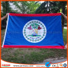 Hot Sale Large Sports Events Customized Flag