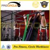 Procircle Natural Latex Pull up Resistance Bands Bundle Exercise Bands