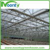 Vertical Saw Tooth Multi-Span Greenhouse