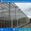 Hot DIP Galvanized Steel Durable Polycarbonate Sheet Green House