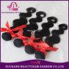 5A Grade Brazilian Virgin Hair Remy Human Hair Extension Weave Weft (LT-1520)