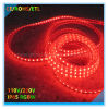 5050SMD RGBW LED Strip Lighting with ETL Approval