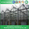 Glass Greenhouse with Galvanized Steel Structure for Flower and Vegetables Growing