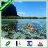 Crystal Clear Inflatable Sea PC Kayak The Transparent Canoe Kayak Price