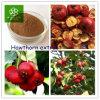 Hawthorn Extract, Hawthorn Fruit Extract, Hawthorn Fruit P. E.