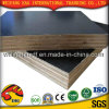 21mm Brown Film Faced Plywood for Construction