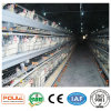 Poultech Automatic a Frame Battery Layer Chicken Cage