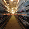 Design Layer Chicken Cage/Automatic Poultry Farming Equipment for Poultry Chicken Farm