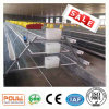 Poultry Farm Equipment and Egg (Layer) Chicken Cages System