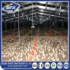 China Commercial Metal Frame Chicken Broiler Poultry Farm House Design for Sale
