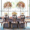 Stainless Stee Wedding Chairs, Gold Stainless Steel Chairs,